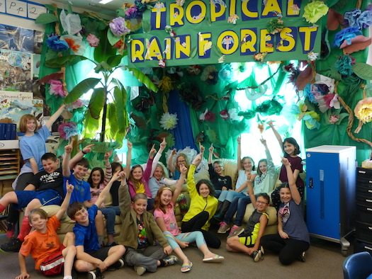 4th grade tropical forest project