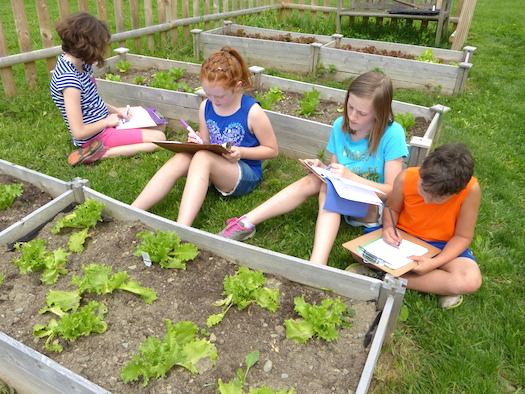 learning math in the garden