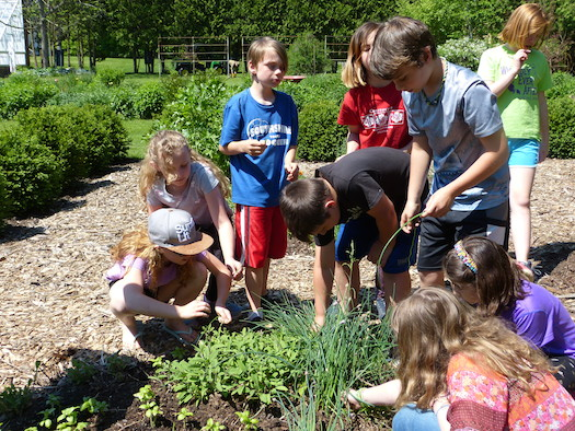 Help Friends of the Hiland Hall Gardens Receive a Grant